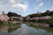 平安神宮(京都)-1