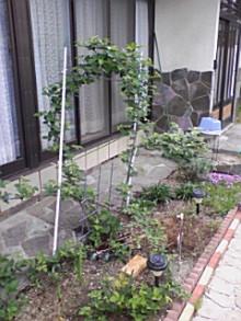 資材屋日記 ReNEW-090505_0758~02.jpg