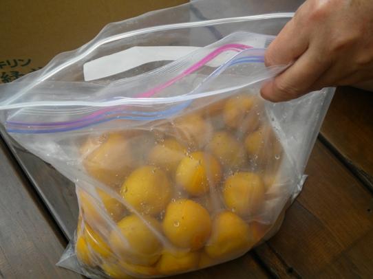 キヨミのガーデニングブログ-簡単・減塩梅干作りの画像