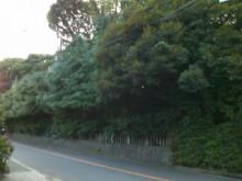 オキガル おきらく きmama日記-SN3F0304.jpg
