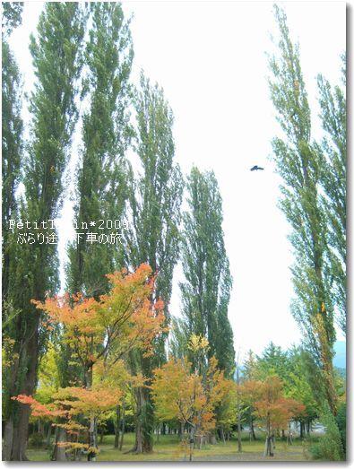 旅好き絵本屋の「えほんのあるせいかつ」☆Petit Train-湖畔8
