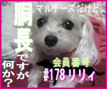 駄犬ぐっちゃん賢犬カレン-胴長同盟#178