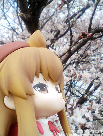 フィギュアメーカー?グッドスマイルカンパニー勤務 『ミカタンブログ -松戸駅まで犬ゾリ4分-』