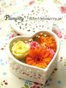 Plumerry(プルメリー)プリザーブドフラワースクール (千葉・浦安校)-ギフト アレンジ 母の日