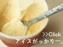 花畑牧場 生キャラメルアイスクリーム まずい 美味しくない