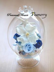 Plumerry(プルメリー)プリザーブドフラワースクール (千葉・浦安校)-クルーククラウン ガラス プリ