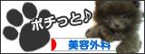 品川美容外科~美容整形の最新情報局~