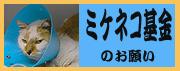 $鎌倉ワンニャン物語-shimizu