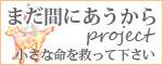 $ハイサワー3代目シスターズ【姉】のブログ-犬猫