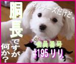 駄犬ぐっちゃん賢犬カレン-胴長同盟#195
