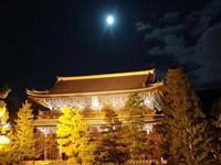 $わんだふるの京都ブログ