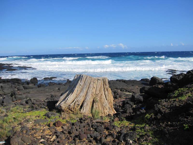 soul trip ☆ ハワイ島  サウスポイント