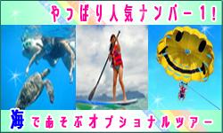 JTBハワイ スタッフブログ-やっぱり海!思いっきり遊ぼう