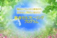 「インナーチャイルドセラピー・前世療法」で心をデトックスし、「世界でたった一つの花」をいっぱい咲かせよう!