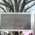 秋休 河本知樹の画像