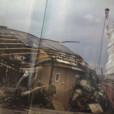 南部虎弾の画像