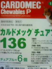 働くママ☆キララの子育て雑記-201105292026000.jpg
