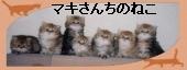 マキさんちの猫・HPへ