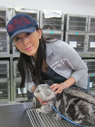 帽子をかぶって猫を病院に連れて来た杉本彩