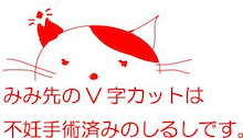 ☆みみ先カット猫のお話☆