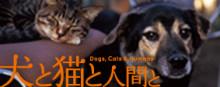 映画「犬と猫と人と」オフィシャルサイト