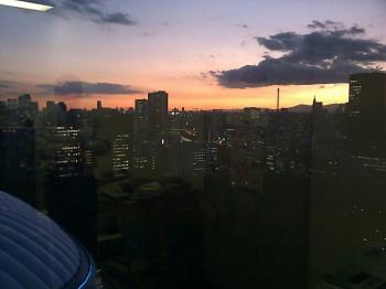 田中かすみの画像