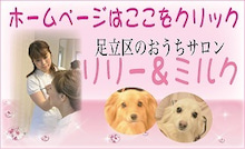 足立区のおうちサロン/リリー&ミルク