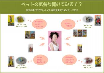 桃歌の画像