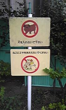 波田陽区の画像