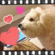 福岡愛の画像