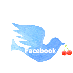 PURE-JUN facebook
