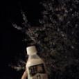 片岡優香の画像