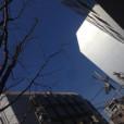 岡崎雪の画像