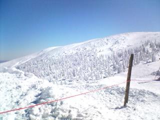 樹氷ロープ