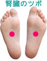 腎臓の足ツボ