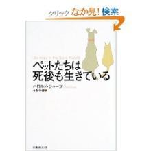 絆を深める応援団 中村政幸の日記