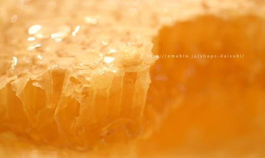 九州蜂の子本舗 巣みつ