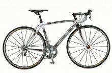 最上位スポーツ自転車