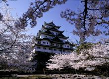 名古屋城(愛知)