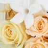 ロザブロ  ウェディングとギフトのお花とワタシ-プリザ