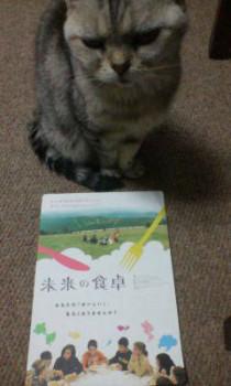 Yurie(ユリエ)の画像