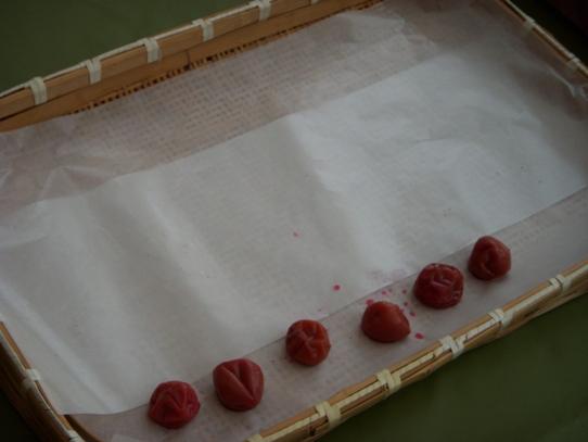 キヨミのガーデニングブログ-2009 梅を干す画像