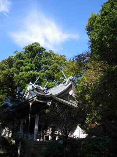 奈良ふしぎ歴史徹底攻略! 学校・教科書では教えてくれない奈良を親子でも100倍楽しめる観光ガイドブックブログ-玉置山 玉置神社