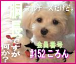 駄犬ぐっちゃん賢犬カレン-胴長同盟#152