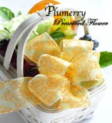 Plumerry(プルメリー)プリザーブドフラワースクール (千葉・浦安校)-リボン レッスン オーガンジー