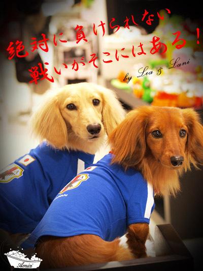 旅犬Lanileaのほほん風船記-サッカーW杯2010