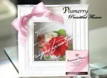 Plumerry(プルメリー)プリザーブドフラワースクール (千葉・浦安校)-オーダーフレーム