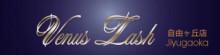 ヴィーナス・タイムズ-logo2
