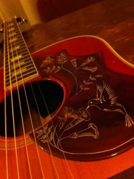 黒澤秀樹の画像