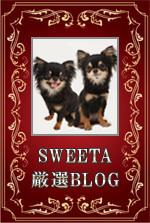 愛犬が結ぶドッグ情報サイト「SWEETA」